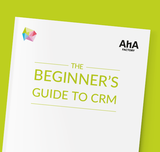 AHA Factory The Beginner's Guide to CRM